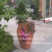 盆景陶罐图片