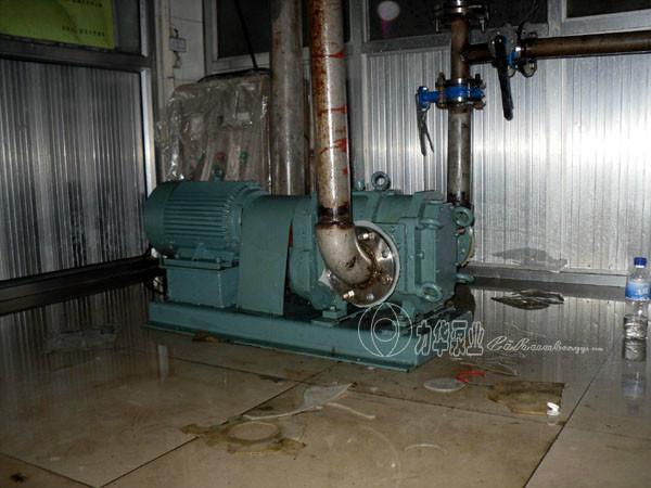 供应山东卫生级食品输送泵生产厂家/山东XHB旋转活塞泵批发电话