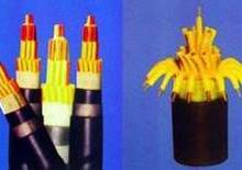 耐火屏蔽双绞线NH-RVS-供应DVC屏蔽信号电缆