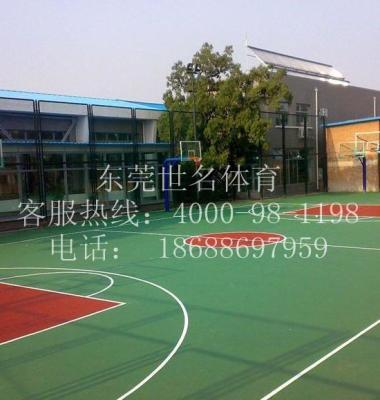 广州室外蓝羽球场油漆施工图片/广州室外蓝羽球场油漆施工样板图 (1)