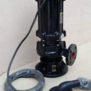 沃德潜水高温泵图片
