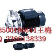 316L不锈钢自吸泵图片