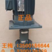 源立YLX450-65涂装油泵图片