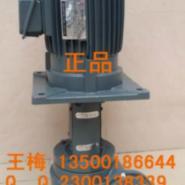 源立GD50-17增压泵图片