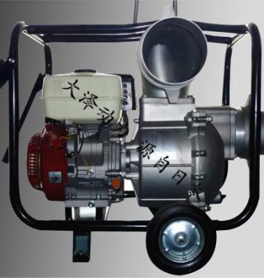 6寸水泵图片/6寸水泵样板图 (1)