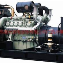 供应柴油发电机/发电机组