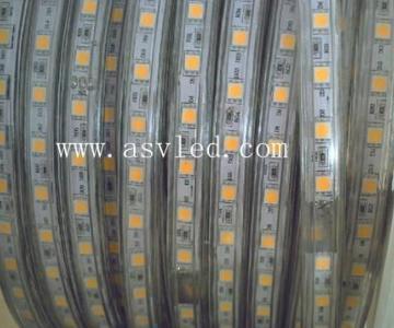供应LED软灯条图片
