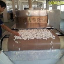 供应ZY-60HM微波氢氧化锆干燥设备