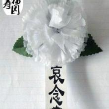 供应小白花胸花