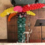 椰子树/苹果树/气球树图片