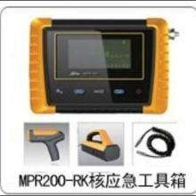 供应核辐射监测仪核放射性检测仪|北京核事故应急检测工具箱