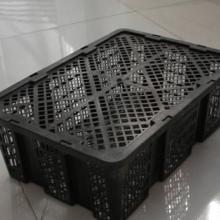 供应塑料托盘食品箱鸡蛋箱批发