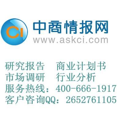 电壁炉研究报告图片/电壁炉研究报告样板图 (1)