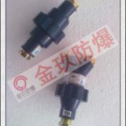 CHL-4-2本安电缆连接器图片