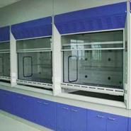 青岛实验室家具.全钢通风柜厂家图片