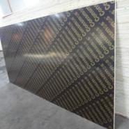 建筑覆黑膜板/棕膜板出口厂家图片