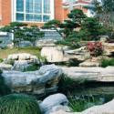 上海园林绿化工程服务热线图片
