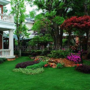 上海别墅园林景观厂家供应图片
