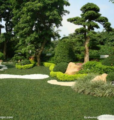 江苏苏州哪里的园林景观最便宜图片/江苏苏州哪里的园林景观最便宜样板图 (3)