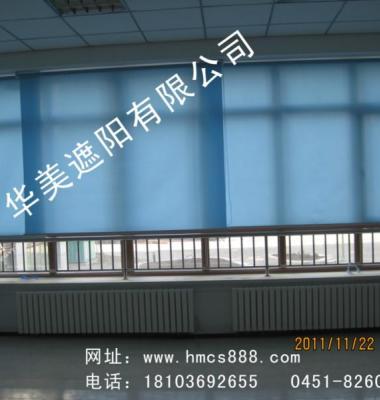 电动天棚帘图片/电动天棚帘样板图 (2)
