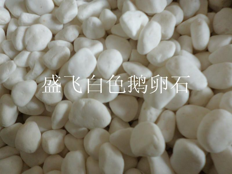白色鹅卵石 公园铺设鹅卵石