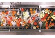 供应洗菜机价格-洗菜机单价-洗菜机销售-初加工设备