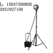供应GWF50209(环保灯(GWF5020(寿命长GWF5020