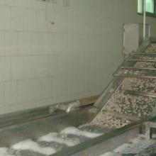 供应花生清洗机根茎类清洗机果蔬清洗机价格清洗机厂家