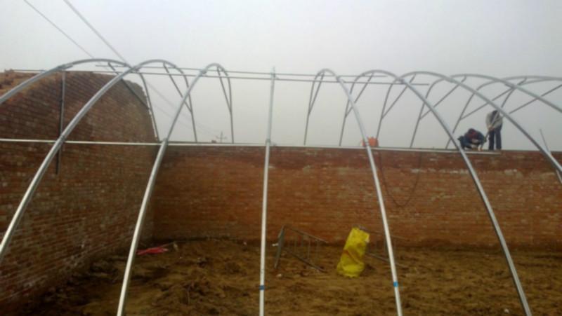 供应冬暖式温室大棚造价图片