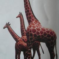 供应仿真动物模型长颈鹿仿真模型
