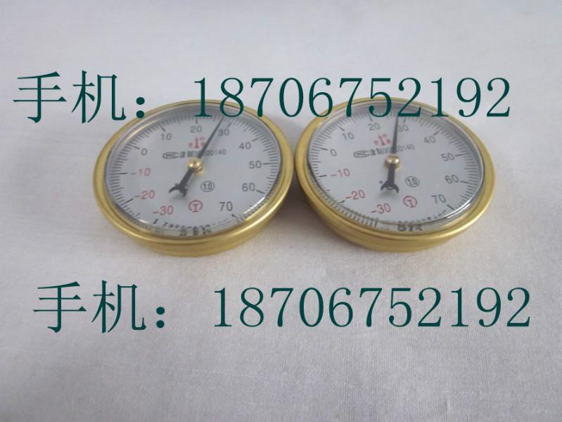 供应指针式钢轨温度计