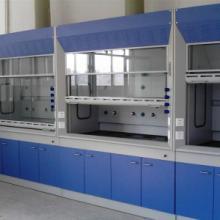 供应实验台通风柜实验室装修实验室家具福州实验台福州通风柜实验台厂家