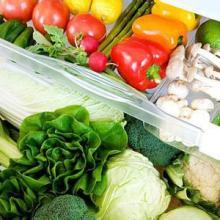 新鲜蔬菜批发