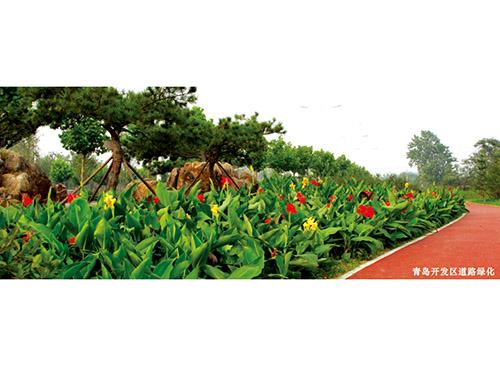 绿化工程哪里找 园林绿化工程绿化工程