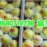 供应广东珍珠棉水果网套、EPE水果网袋【厂家直销、RoHS认证】