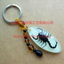 供应昆虫钥匙扣 旅游纪念品