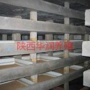 内蒙土元药材呼视频内蒙古土元养殖图片