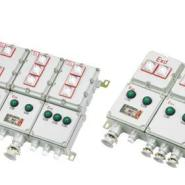 防爆配电箱厂家定做12回路防爆箱图片