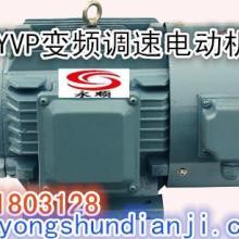 供应永顺YVP变频电机机械设备用电动机
