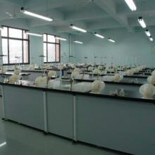 通风化学实验室,温州通风化学实验室,通风化学实验室价格,通风化学实验室厂家