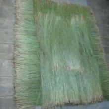 供应佳木斯乌拉草原料,东北野生乌拉草干草