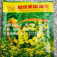 供应美国油王油菜种子批发油菜籽种子免费提供技术指导呦