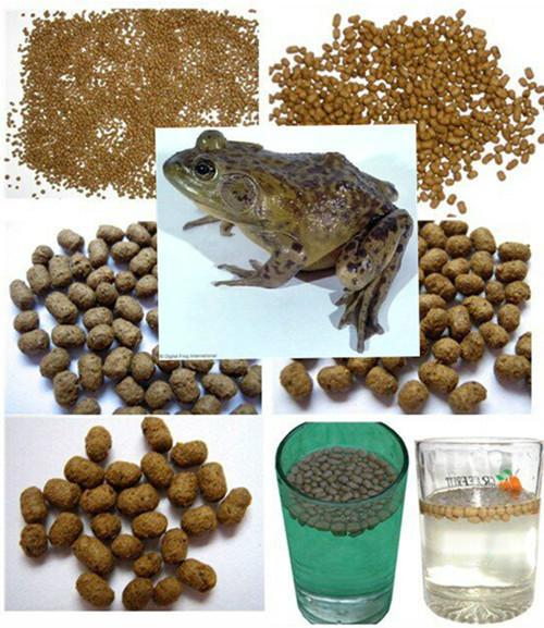 供应牛蛙饲料加工机械图片