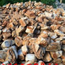 水族宠物用品批发价-生产厂家哪家好-园林工程商-优质服务厂家批发