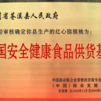 供应2014最新红心猕猴桃苗价格四川原产地最大红心猕猴桃苗生产基地