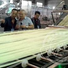 供应自动化鲜湿米粉设备半干粉机械