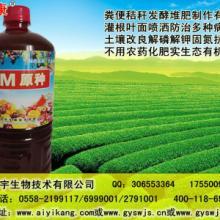 种植用em菌有机肥发酵操作方法批发