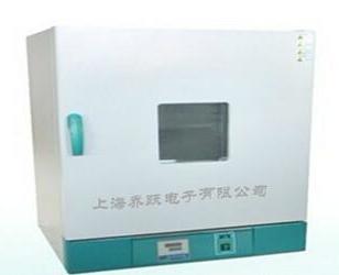 101立式电热鼓风干燥箱图片