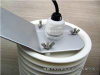 供应RY-WS301户外温湿度气象仪图片