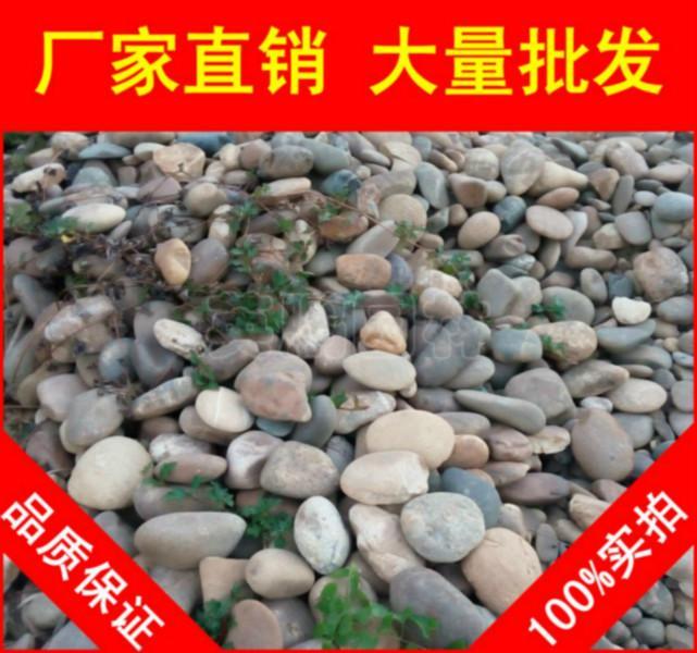 供应广东博罗杂色鹅卵石,矿山出货鹅卵石生产厂家